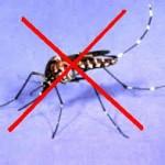 Diệt Muỗi Quận 4