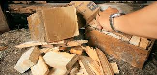 Mở Hộp và bắt đầu rắc Thuốc vào Các thanh gỗ dụ Mối và con Mối