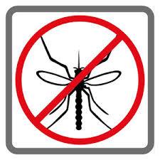 Dịch  Vụ Diệt Muỗi Quận 8