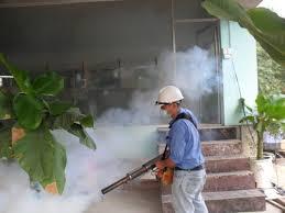 Phun Thuốc Muỗi Tại Nhà