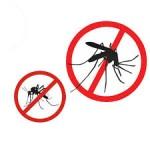 Dịch Vụ Diệt Muỗi Tại Đồng Nai