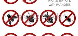 Diệt côn trùng tại quận 12
