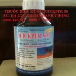 Thuốc Diệt Muỗi Quikper 50 Ec