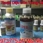 Ban Thuoc Diet Con Trung VIPER 25 EC