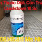 Ban Thuoc Diet Con Trung Muoi, Gian Crackdown 10 Sc